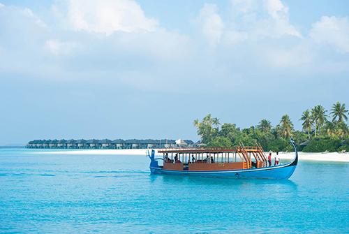Dhoni Maldivo