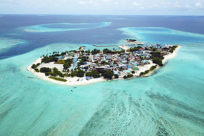 Islas Locales - Esencial