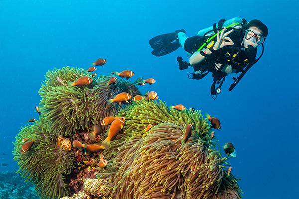 Buceando en Maldivas